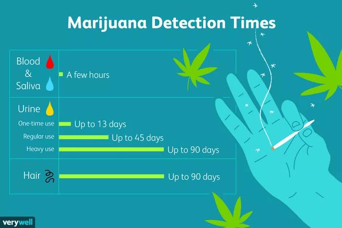 marijuana stay insystem